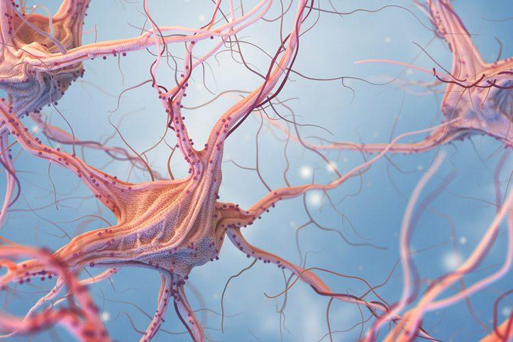 Epilepsi Sara Hastalığı